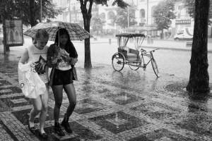 manager as umbrella